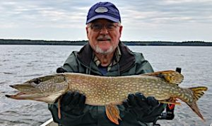 Plentiful Northern Pike Fishing at Fireside Lodge in Canada