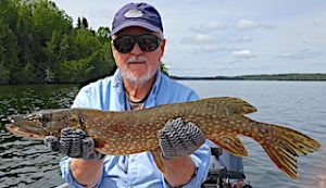 Ed Loving Northern Pike Fishing at Fireside Lodge in Ontario Canada