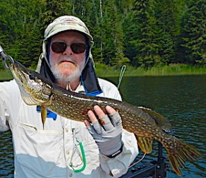 The End Result of the Fly Fishing Process for Northern Pike by Dennis at Fireside Lodge in Ontario Canada