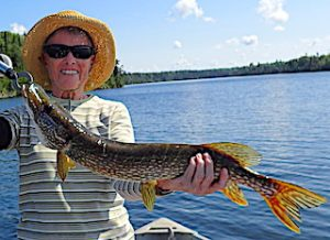 Catching 32 Northern Pike in One Day Fishing by Ollie at Fireside Lodge in Ontario Canada