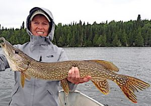 Ollie with Another BIG Northern Pike Fishing at Fireside Lodge in Northwest Ontario Canada