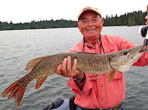 BIG Northern Pike on Lite Line Fishing for Smallmouth Bass are Fun by Bob at Fireside Lodge in Canada