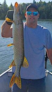 GREAT Northern Pike Fishing by Marty at Fireside Lodge in Canada