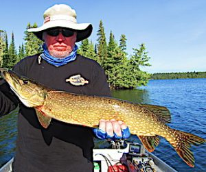 Caught Many Large Northern Pike Fishing at Fireside Lodge in Ontario Canada by Walt
