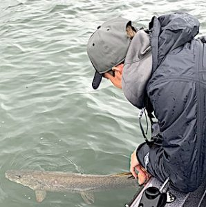 Northern Pike Release Fishing at Fireside Lodge in Canada