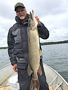 Incredible Fishing for BIG Northern Pike at Fireside Lodge by Jeff
