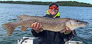 40-inch Trophy Northern Pike by Steve Fishing at Fireside Lodge in Northwest Ontario Canada
