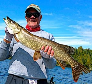 Many BIG Northern Pike Fishing at Fireside Lodge in Canada by Paul
