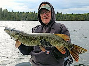 One Big Northern Pike After Another Fishing by Paul in Canada
