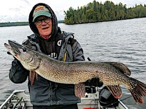 HUGE 39-inch Northern Pike Fishing by Paul at Fireside Lodge in Canada