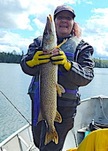 Mary Fishing BIG Northern Pike at Fireside Lodge in Canada