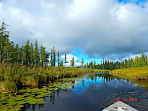 Fabulous Wilderness Fishing Adventure at Fireside Lodge in Northwest Ontario Canada
